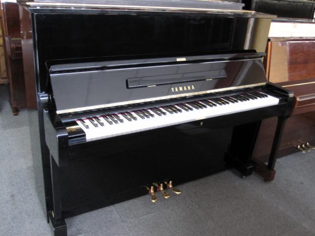 Cho Thuê Đàn Piano Điện Chuyên Nghiệp