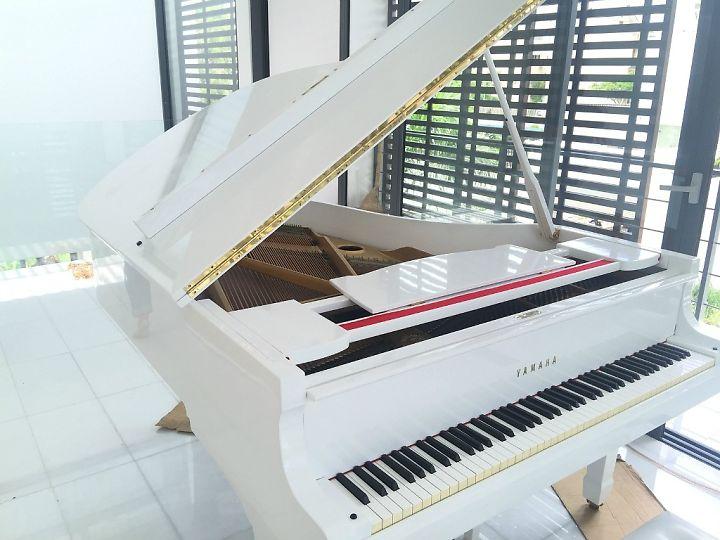 Cho Thuê Đàn Piano Cơ Chuyên Nghiệp